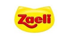 Case de Sucesso em gestão de redes sociais: Zaeli