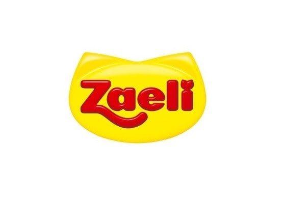 Agência de Mídias Sociais - Cliente Zaeli